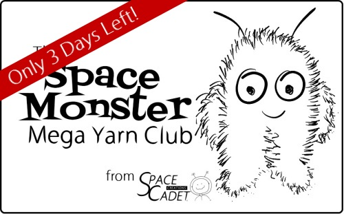 The SpaceMonster Mega Yarn Club from SpaceCadet Creations