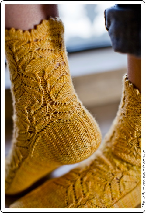 Chrysanthemum frutescens Sock by Hunter Hammersen