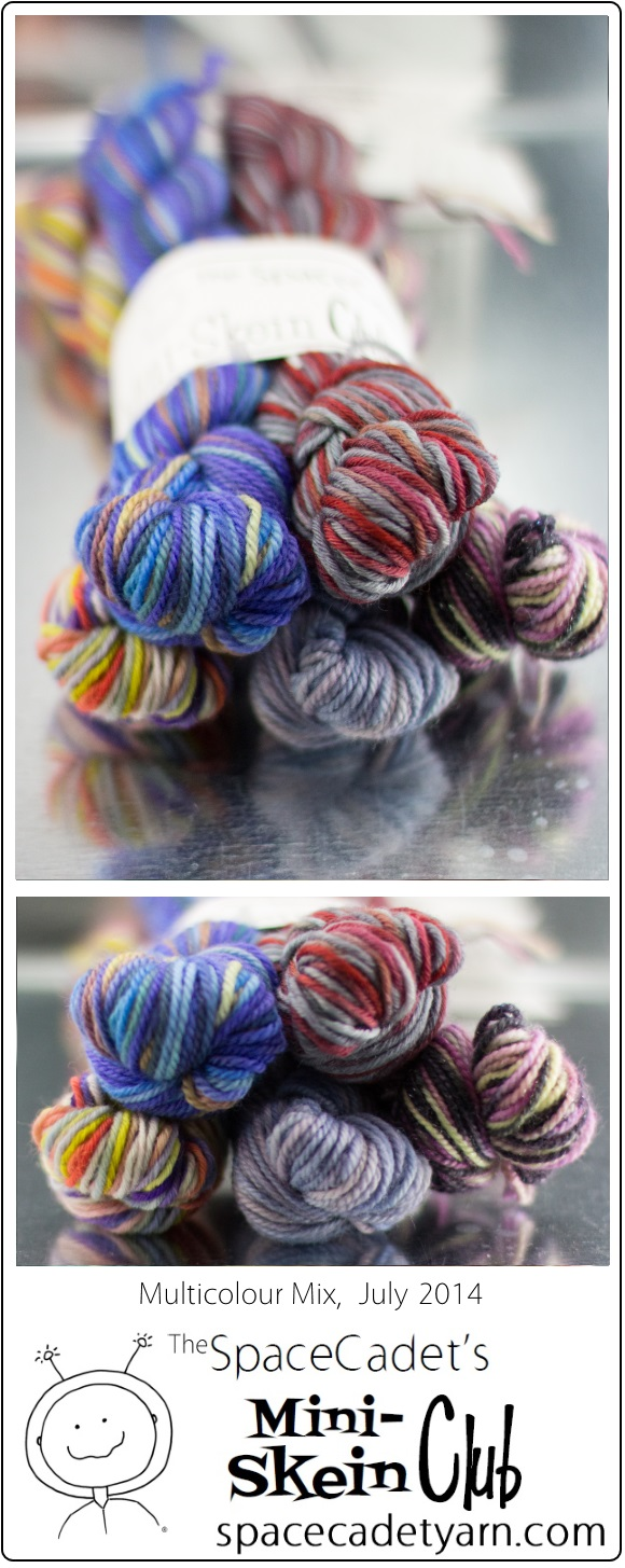 The SpaceCadet's Mini-Skein Club, Multicolour Mix, July 2014