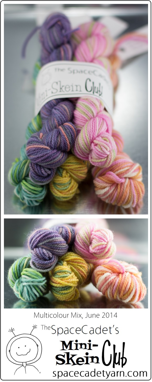 The SpaceCadet's Mini-Skein Club, Multicolour Mix, June 2014