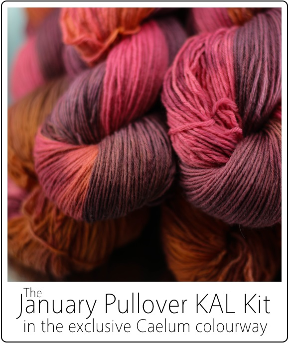 January Pullover KAL Kit by SpaceCadet for the January Pullover by Jenise Reid 02