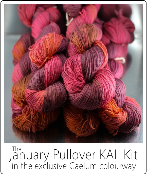 January Pullover KAL Kit by SpaceCadet for the January Pullover by Jenise Reid 05