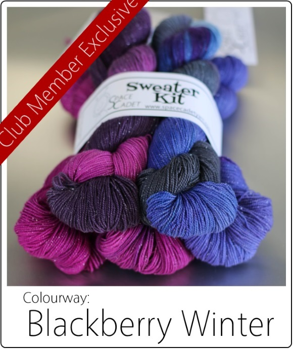The SpaceCadet's Mini-Skein Club Sweater Kit in Blackberry Winter banner 580