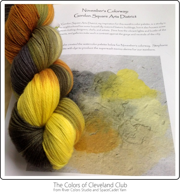 The Colors of Cleveland Club from River Colors Studio and SpaceCadet Yarn -- November's Colourway