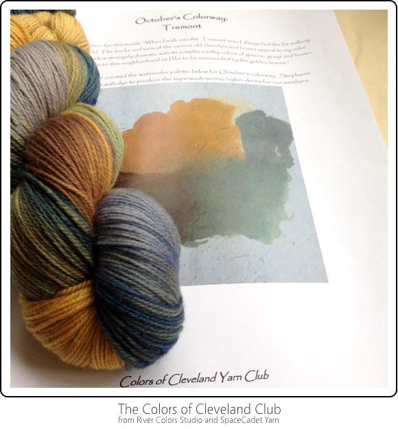 The Colors of Cleveland Club from River Colors Studio and SpaceCadet Yarn -- October's Colourway
