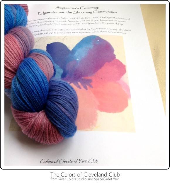 The Colors of Cleveland Club from River Colors Studio and SpaceCadet Yarn -- September's Colourway